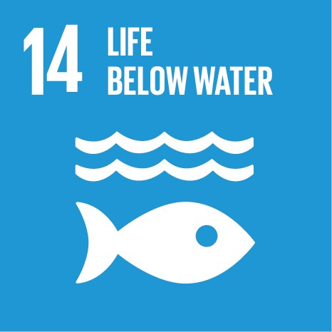 UN Sustainable Development Goals (SDGs) 14