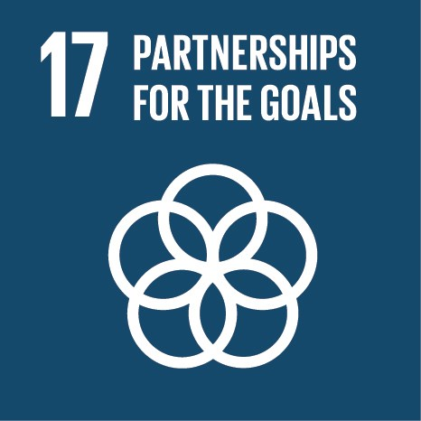 UN Sustainable Development Goals (SDGs) 17