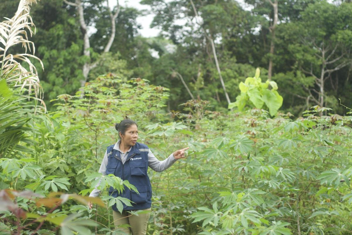 """Image: Adelita, one of the local co-developers shows us around a chagra, which is like a """"forest within the forest"""