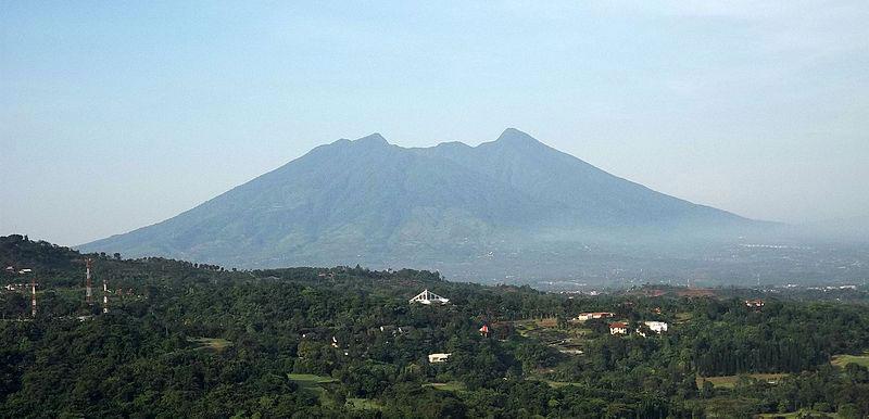 Gunung Salak Geothermal Project