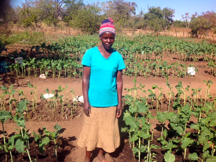 Lilian Manyanga in the Tashinga Community Garden