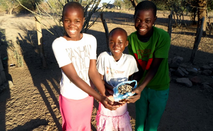 Schoolchildren with the Moringa seed