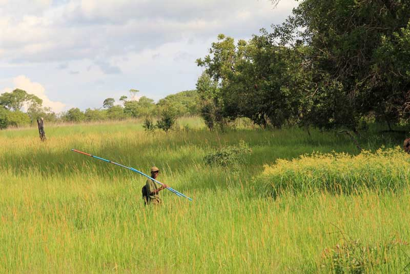 <br /> Givas Chisaka, who is part of the local Kariba REDD+ project team, carries out a plot monitoring field visit in the project area