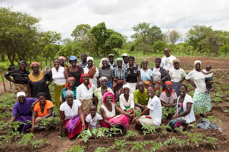 The community members in Hurungwe take pride in their work around their Nutritional Garden (Tashinga)