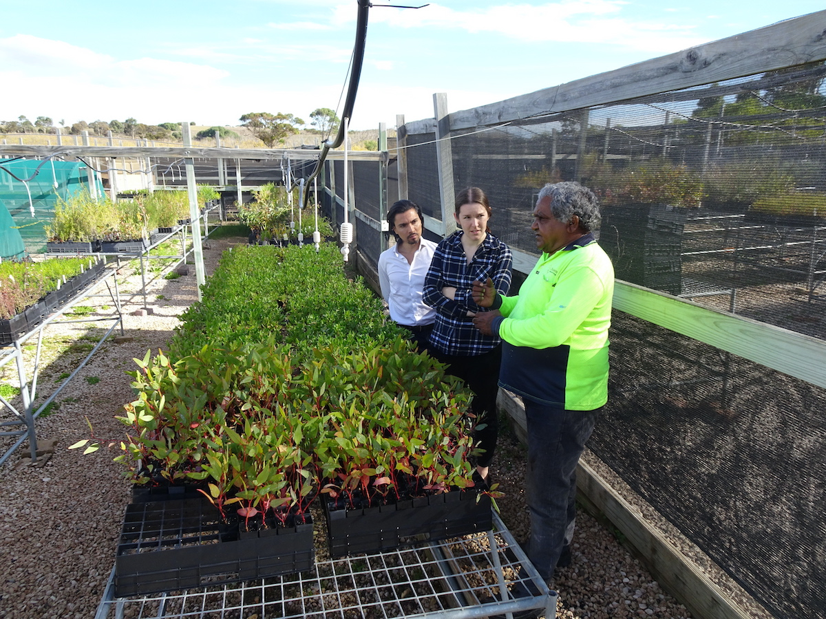 Image: South Pole's Jorge Acevedo and Rhyannon Galea learning about local plants at the Raukkan nursery