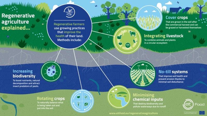 Regenerative Landwirtschaft heisst die zukunftsweisende Losung