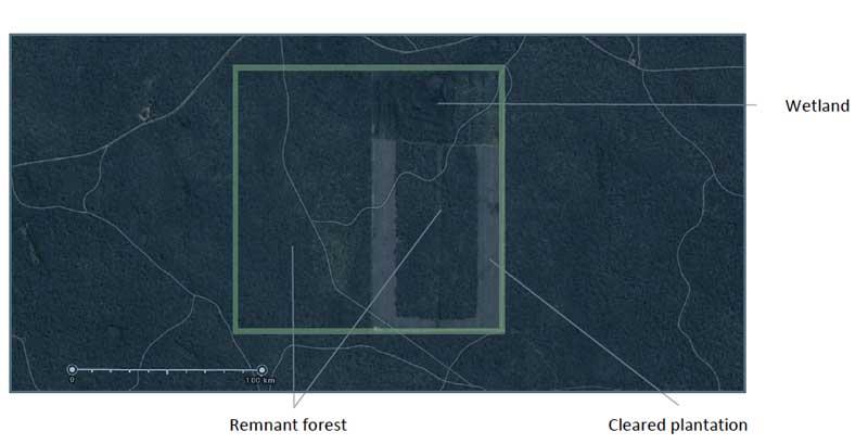 Figure 1: Satellite image of Myamyn site (site boundaries shown in light green)