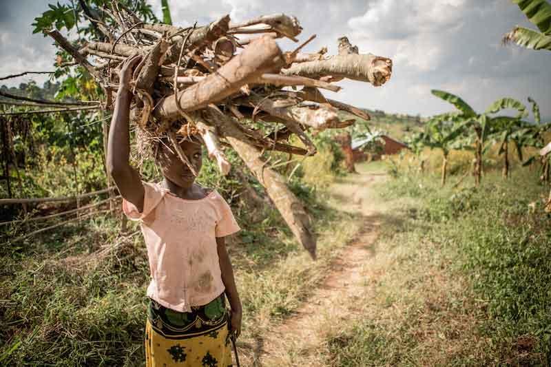 Supply Chain in Tanzania
