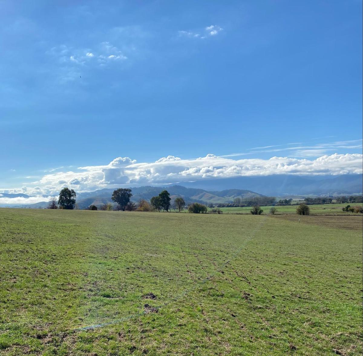 Image: Stunning farmland in Victoria, where we are seeing growing interest in carbon farming
