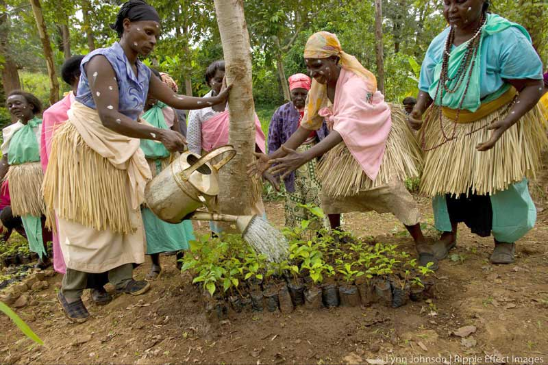 The women changing Uganda, one seed at a time