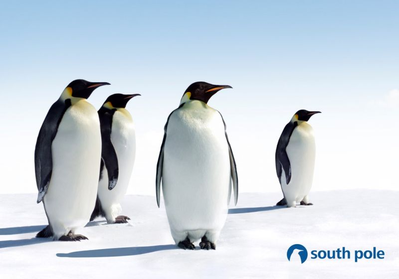 South Pole Expands European Presence with Berlin Office