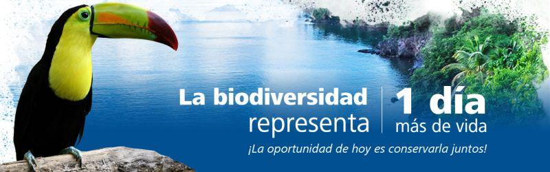 Foro de Inversiones en Biodiversidad y Servicios Ecosistémicos
