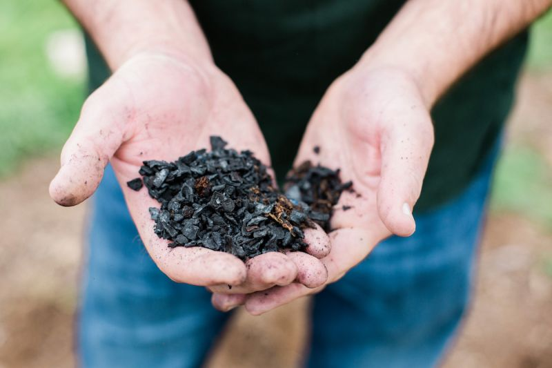 Could humble biochar be the next big carbon removal solution to fight climate change?