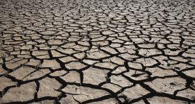 Klimatkompensation