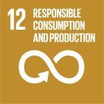 SDG 12 logo link