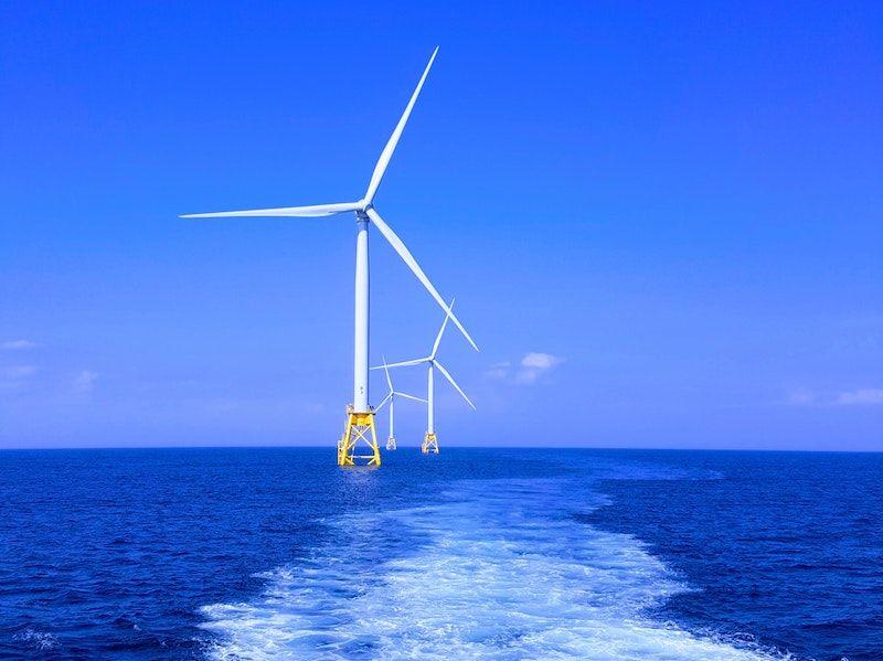 Har företag råd att INTE investera i förnybar energi?