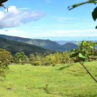 Proyectos de REDD+ para la gobernanza comunitaria y la construcción de paz en Colombia