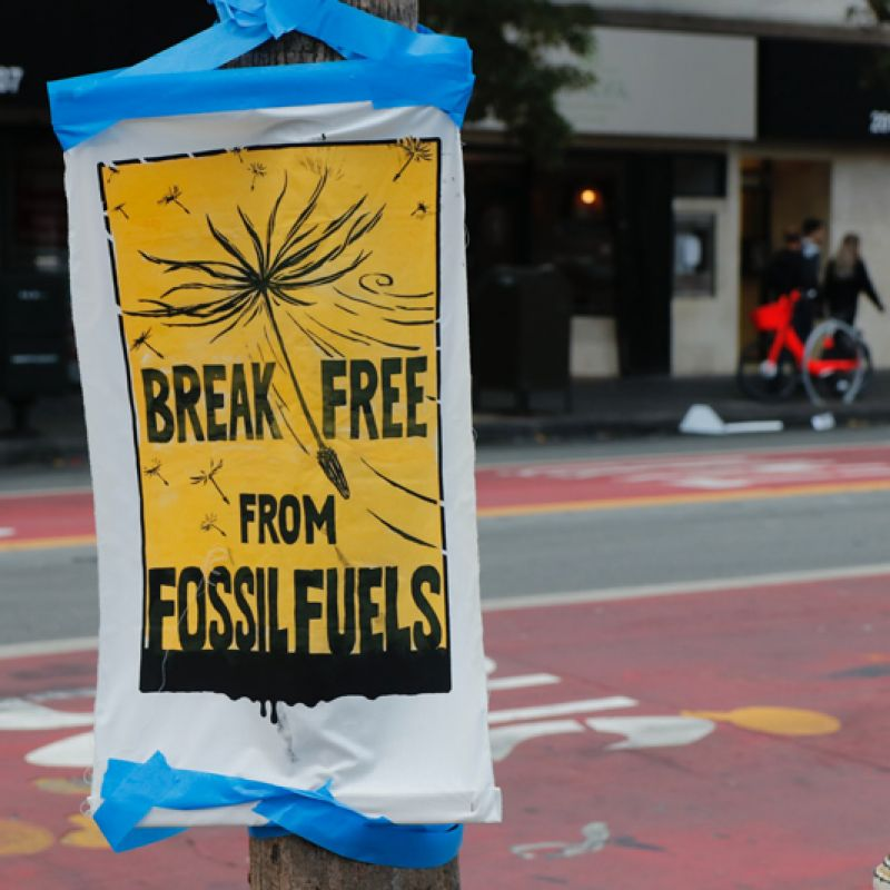 Court rulings and investor action: What is the future of the fossil fuel industry?