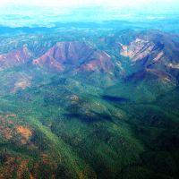 Kariba Forest Protection