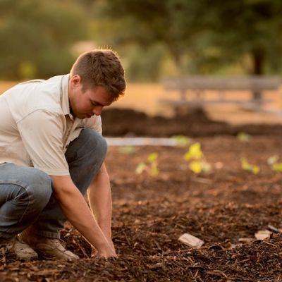 next-generation-farming-project-south-pole.jpeg