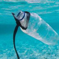 Tackling Plastic Crisis