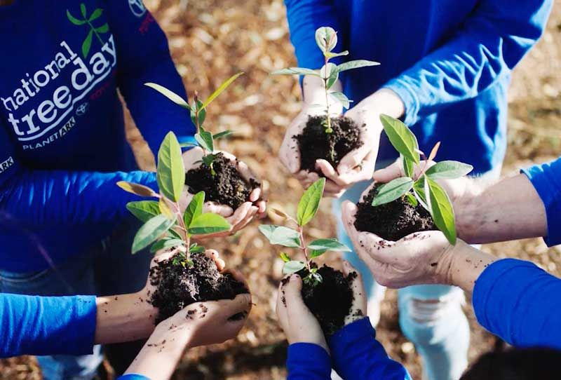Corporate Tree Planting Day 2019, Australia