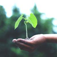 US sustainable finance