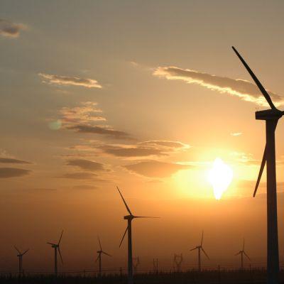 International Renewable Energy Certificates